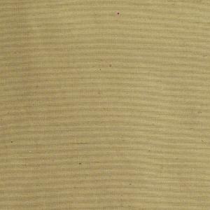 Tecido Liso Organza Bege 1,37m