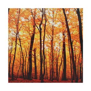 Tela Árvores de Outono 30x30cm
