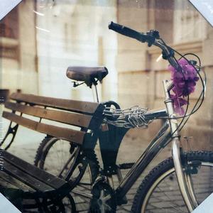 Tela Bicicleta 30x30cm