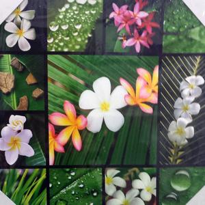 Tela Plantas e Flores 30x30cm