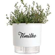 Vaso Auto-Irrigável Raiz - Grande - Gourmet - Branco - Tomilho