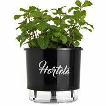 Vaso Auto-Irrigável Raiz - Grande - Gourmet - Preto - Hortelã