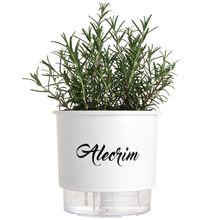 Vaso Auto-Irrigável Raiz - Médio - Gourmet - Branco - Alecrim