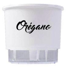 Vaso Auto-Irrigável Raiz - Médio - Gourmet - Branco - Orégano