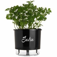 Vaso Auto-Irrigável Raiz - Médio - Gourmet - Preto - Salsa