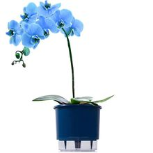 Vaso Auto-Irrigável Raiz - Médio - Liso - Azul Escuro