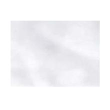 Vidro Transparente Comum Incolor 2mm Leal e Barreto
